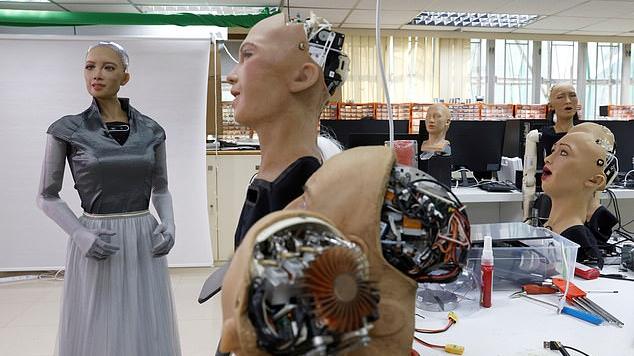 Robot – robotolás helyett? I. rész